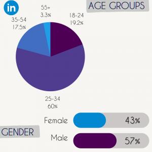 LinkedIn site demographics